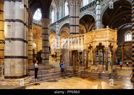 The pulpit; the interior of Siena Cathedral ( Duomo Siena ), Siena, Tuscany Italy Europe - Stock Image