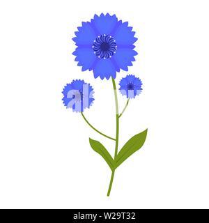 Cornflower flower flat icon, wildflowers, plant vector illustration isolated on white background - Stock Image