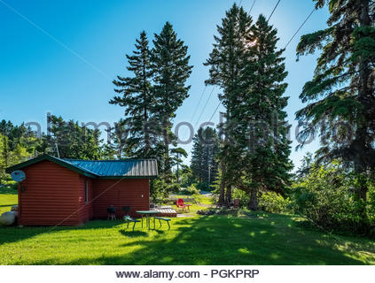 Morning sun filters through evergreen trees by a cabin located a short walk from Lake Superior, near Grand Marais, Minnesota, USA. - Stock Image