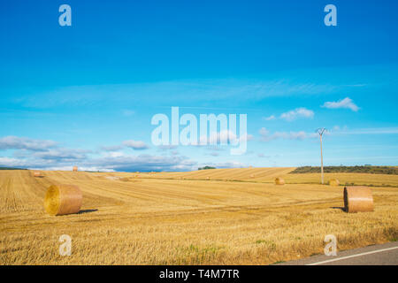 Straw bales and harvested field. Palencia, Spain. - Stock Image