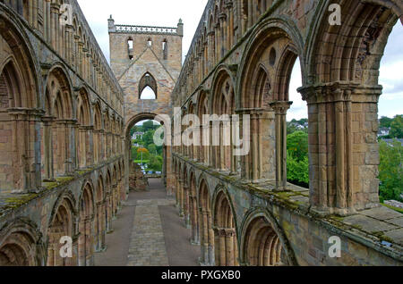 Ruins of Jedburgh Abbey 12th century Augustinian Abbey and monastry. Mix of Romanesque and Gothic architecture - Stock Image