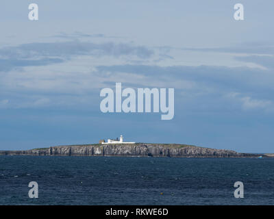Coquet Island RSPB reserve. - Stock Image