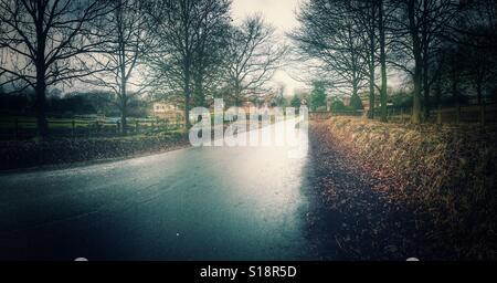 Country lane uk - Stock Image