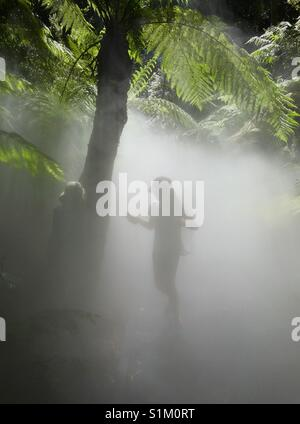 Kids playing in mist of a rainforest - Stock Image