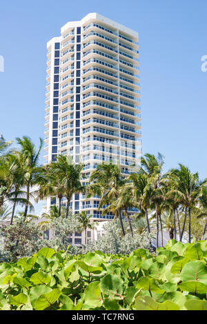 Miami Beach Florida North Beach St. Saint Tropez Ocean Front high rise condominium building balconies palm trees - Stock Image