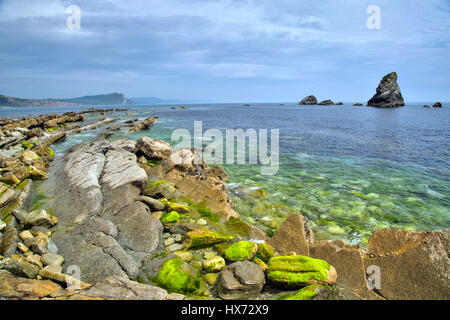 Low Tide on the Mupe Ledges - Stock Image