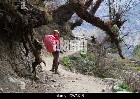 Photo young woman traveler with red backpack hiking in mountains beautiful summer landscape on background. Horizontal. - Stock Image