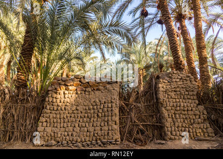 An old traditional building made of clay, thatched walls and adobe bricks in the gardens of date palms near El-Bawiti town, in oasis of Bahariya, West - Stock Image