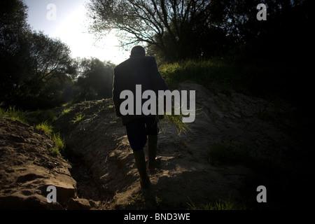 Retiree Antonio Sanchez Lozano picks wild asparagus in Prado del Rey, Cadiz province, Andalusia. - Stock Image