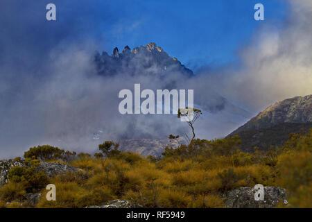 Beautiful solitude of wild Cradle Mountain National Park in Tasmania - Stock Image