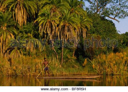 Buhsman in dugout canoe, Okavango Delta, Botswana - Stock Image