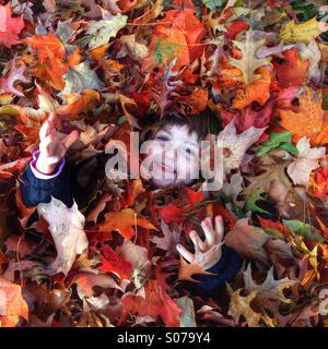 Young girl in pile of fall leaves - Stock Image