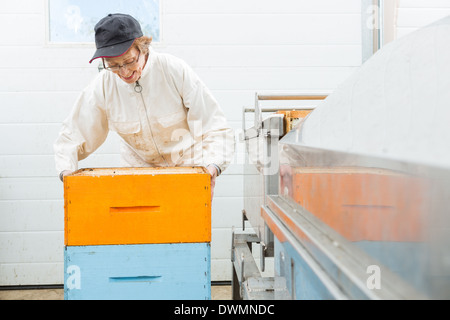 Beekeeper With Honeycomb Crates At Factory - Stock Image