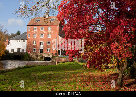 the old watermill at Elstead in autumn, Surrey (now a restaurant), England - Stock Image