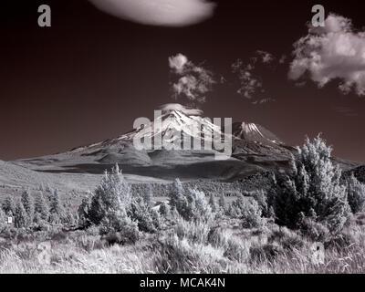 Mount Shasta, - Stock Image