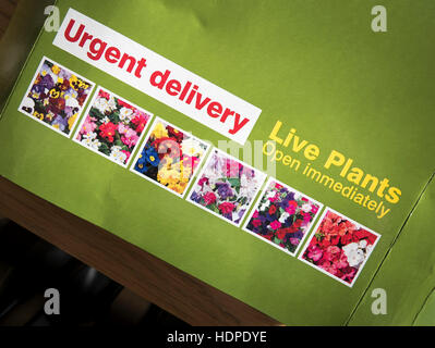 Package containing live plants bought through Mail Order - Stock Image