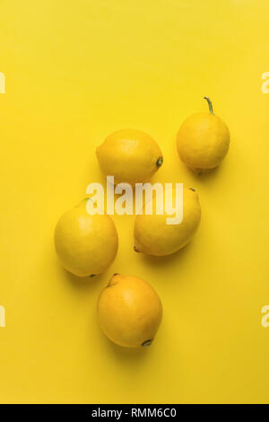Bunch of raw organic lemons on monotone yellow background. Creative flat lay food poster. Vegan vitamins summer tropical fruits cocktail ingredients.  - Stock Image
