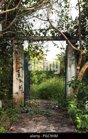 Door in Anh Binh, Vietnam - Stock Image