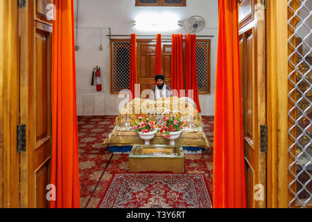Sikh holy man in the Golden Temple of Amritsar (Sri Harmandir Sahib, Darbar Sahib), the holiest pilgrimage site of Sikhism, Amritsar, Punjab, India - Stock Image