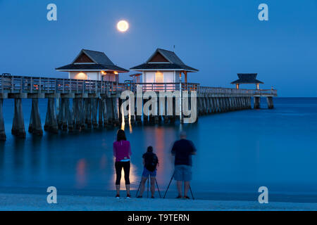 Photographers capturing the setting Full Moon and early morning twilight over the Naples Pier, Naples, Florida, USA - Stock Image