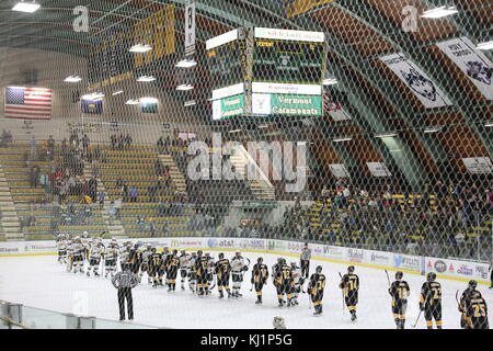 Traditional post-game handshake at college men's ice hockey game, University of Vermont vs. Colorado College, - Stock Image