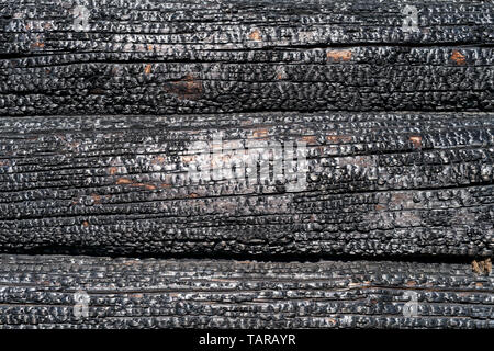 Burned wooden logs wall close up. Natural texture and background - Stock Image