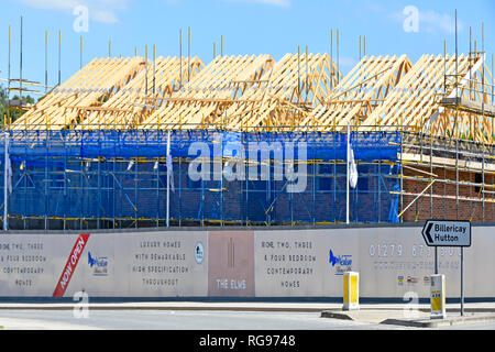 Timber roof & scaffolding house development building construction site of new homes with help to buy home logo on hoarding Brentwood Essex England UK - Stock Image