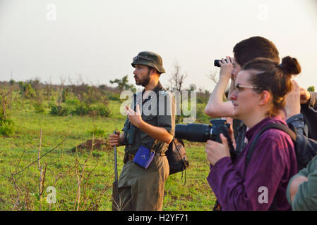 Ranger and group of walkers on a 5 am bushwalk (walk outside the electric fences of the camps) sight rhinos &wild - Stock Image