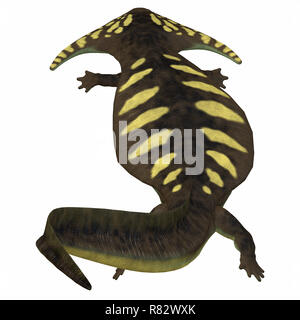 Diplocaulus Amphibian Tail - Diplocaulus was an amphibian that lived in the Permian Period of North America and Africa. - Stock Image