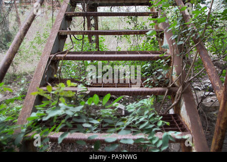 Steps inside the abandoned former Union Carbide industrial complex, Bhopal, India - Stock Image