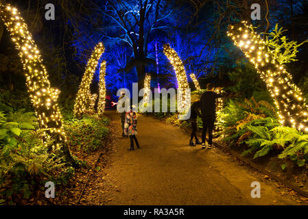 Waddesdon, Buckinghamshire, UK. December 31st 2018. On New Years Eve from dusk onwards the Waddesdon Manor Christmas Carnival light trail was enjoyed by large crowds. Waddesdon Manor House was bathed in changing coloured light, and grounds were incorporated into a colourful light trail. Credit: Stephen Bell/Alamy Live News. - Stock Image