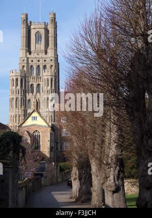 The west tower of Ely Cathedral in Cambridgeshire, England, UK. Viewed from the south with a blue sky. - Stock Image