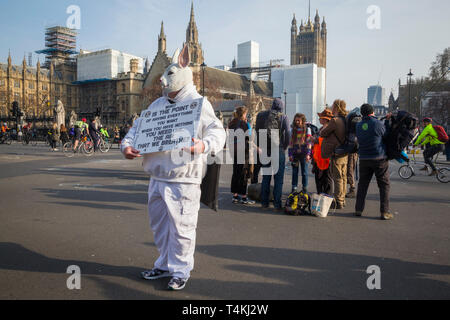 A protestor dressed as a White Rabbit by Parliament Square, Westminster for the Extinction Rebellion demonstration - Stock Image