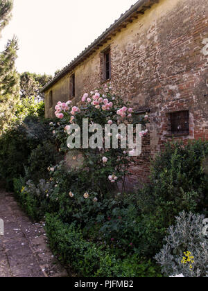 Italy, Tuscany, Florence, house in Fiesole - Stock Image