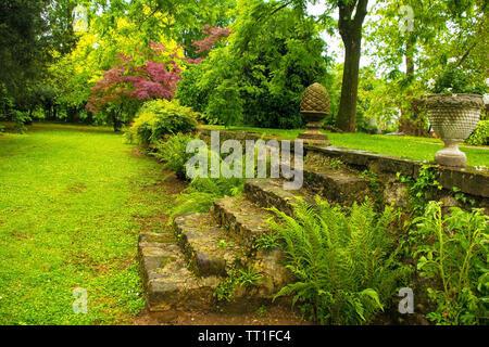 Stone steps in a formal garden in Friuli Venezia Giulia, north east Italy - Stock Image