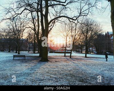 Victoria Park, morning, January 2015 - Stock Image