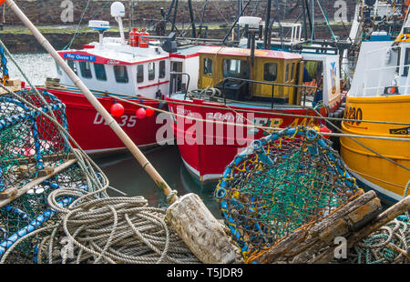 The Inner Harbour at Dunbar in East Lothian full of fishing boats and nets and pots on the south east coast of Scotland - Stock Image
