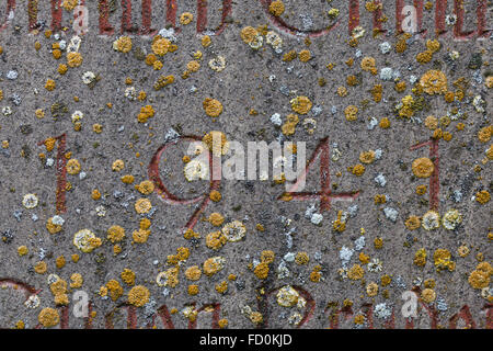 Year 1941 carved in stone covering with moss. The years of World War II. - Stock Image