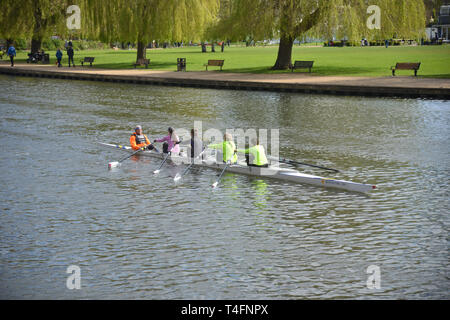 A coxed ladies four rows on the River Avon, Stratford upon Avon, Warwickshire - Stock Image