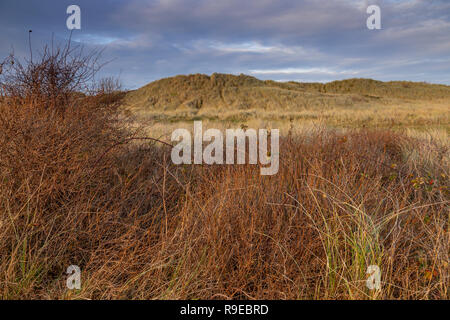 Grass covered sand dunes at Talacre on the North Wales coast - Stock Image