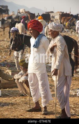 The Camel Fair, Pushkar, Rajasthan, India - Stock Image