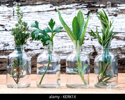 Bottle of essential oil with herbs rosemary, sage,parsley  and thyme  set up on old wooden background . - Stock Image
