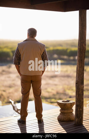 Rear view of man standing on wooden plank - Stock Image