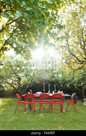 Sun shining over trees and garden party table in backyard - Stock Image