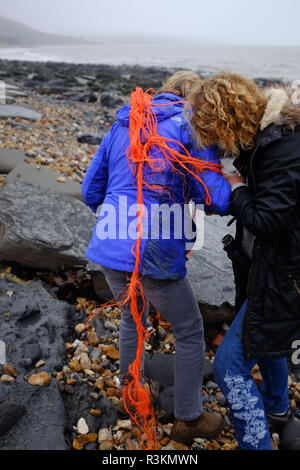 Collecting plastic waste litter and rubbish on the famous Jurassic coast beach between Charmouth and Lyme Regis in West Dorset UK - Stock Image