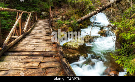 Wooden bridge in the forest. Canyon of waterfalls in Rhodope mountain, Bulgaria. - Stock Image