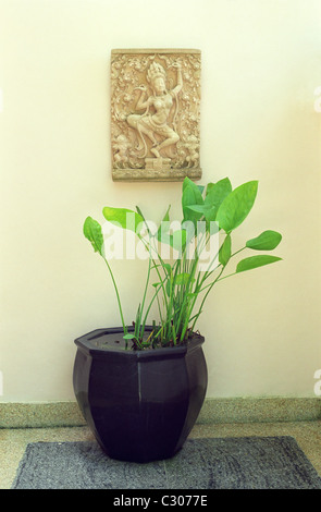 Asian resort interior in Phuket, Thailand - Stock Image