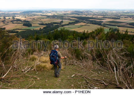 Tourist with backpack looks from a hill at Canterbury plains, New Zealand - Stock Image