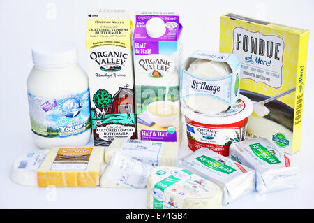 Dairy products: cheese, yogurt, butter, cream, buttermilk - Stock Image
