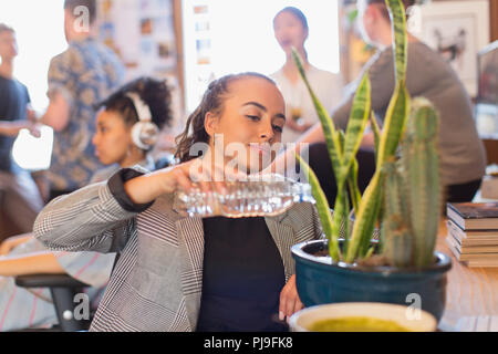 Businesswoman watering cactus plant with bottle water in office - Stock Image